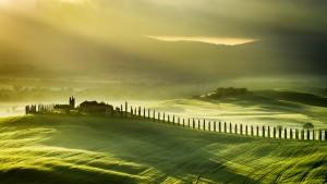 Italy, Tuscany, road