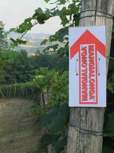 Mangialonga wine trail, Italy