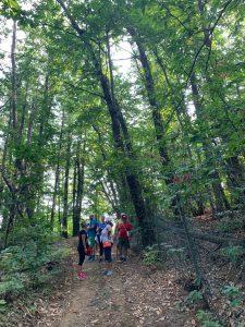 Wine trekking in Italy, Piedmont